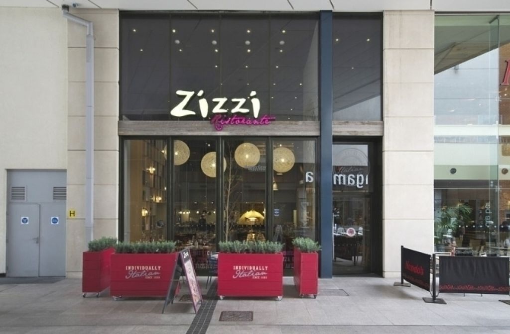 """Photo of Zizzi  by <a href=""""/members/profile/Meaks"""">Meaks</a> <br/>Zizzi <br/> August 18, 2016  - <a href='/contact/abuse/image/77457/169695'>Report</a>"""