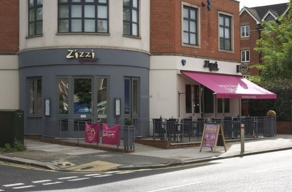 "Photo of Zizzi  by <a href=""/members/profile/Meaks"">Meaks</a> <br/>Zizzi <br/> August 18, 2016  - <a href='/contact/abuse/image/77459/169795'>Report</a>"