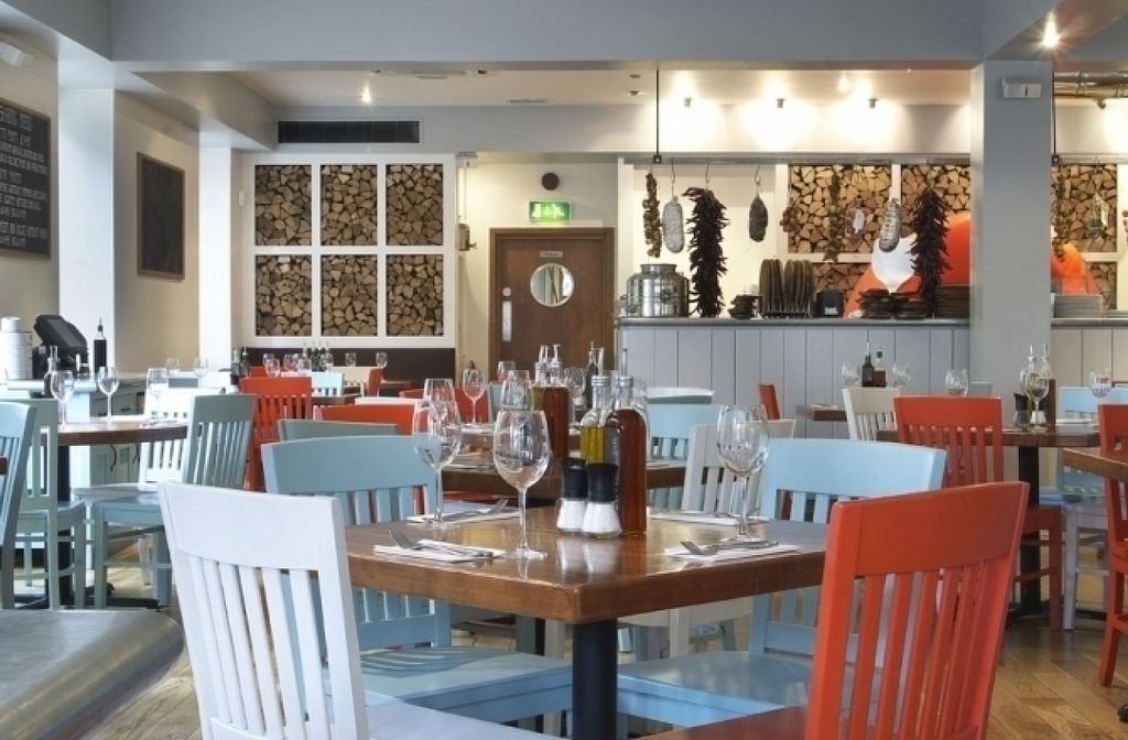 "Photo of Zizzi  by <a href=""/members/profile/Meaks"">Meaks</a> <br/>Zizzi <br/> August 18, 2016  - <a href='/contact/abuse/image/77459/169797'>Report</a>"