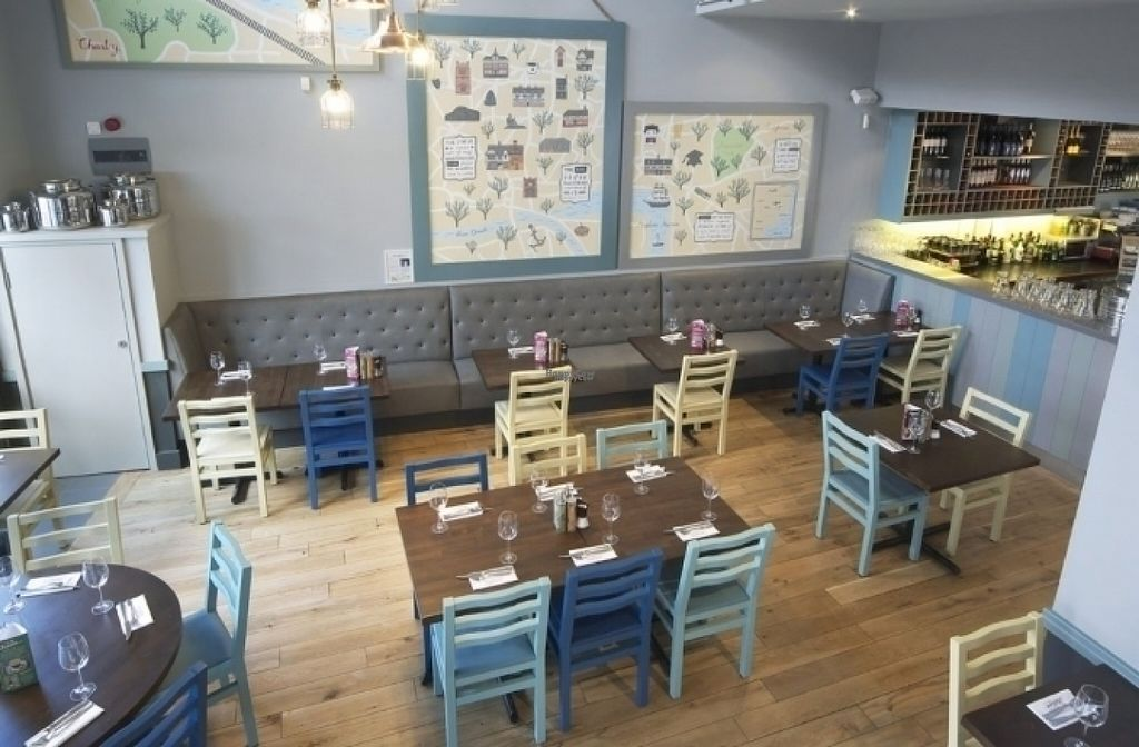 """Photo of Zizzi  by <a href=""""/members/profile/Meaks"""">Meaks</a> <br/>Zizzi <br/> August 19, 2016  - <a href='/contact/abuse/image/77462/169954'>Report</a>"""