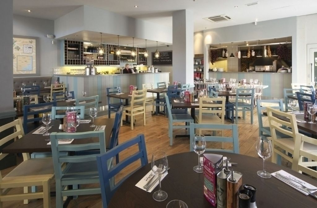 """Photo of Zizzi  by <a href=""""/members/profile/Meaks"""">Meaks</a> <br/>Zizzi <br/> August 19, 2016  - <a href='/contact/abuse/image/77462/169955'>Report</a>"""