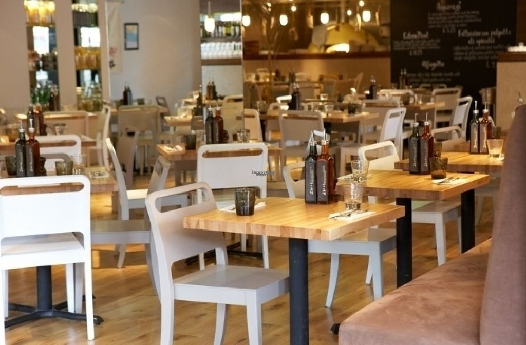 "Photo of Zizzi  by <a href=""/members/profile/Meaks"">Meaks</a> <br/>Zizzi <br/> August 11, 2016  - <a href='/contact/abuse/image/77464/167647'>Report</a>"