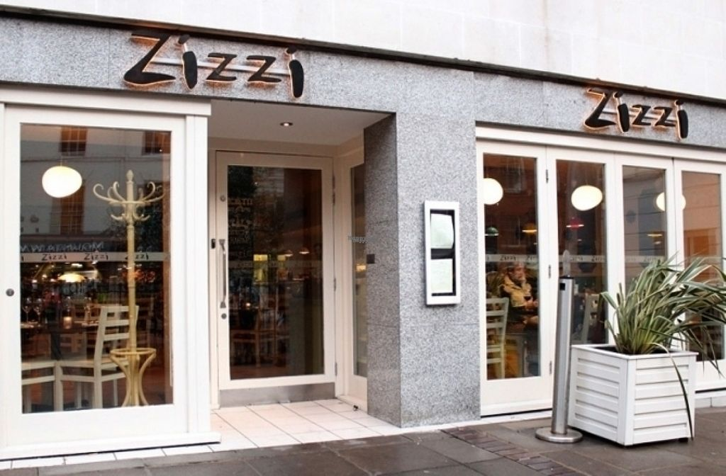 """Photo of Zizzi  by <a href=""""/members/profile/Meaks"""">Meaks</a> <br/>Zizzi <br/> August 11, 2016  - <a href='/contact/abuse/image/77466/167648'>Report</a>"""