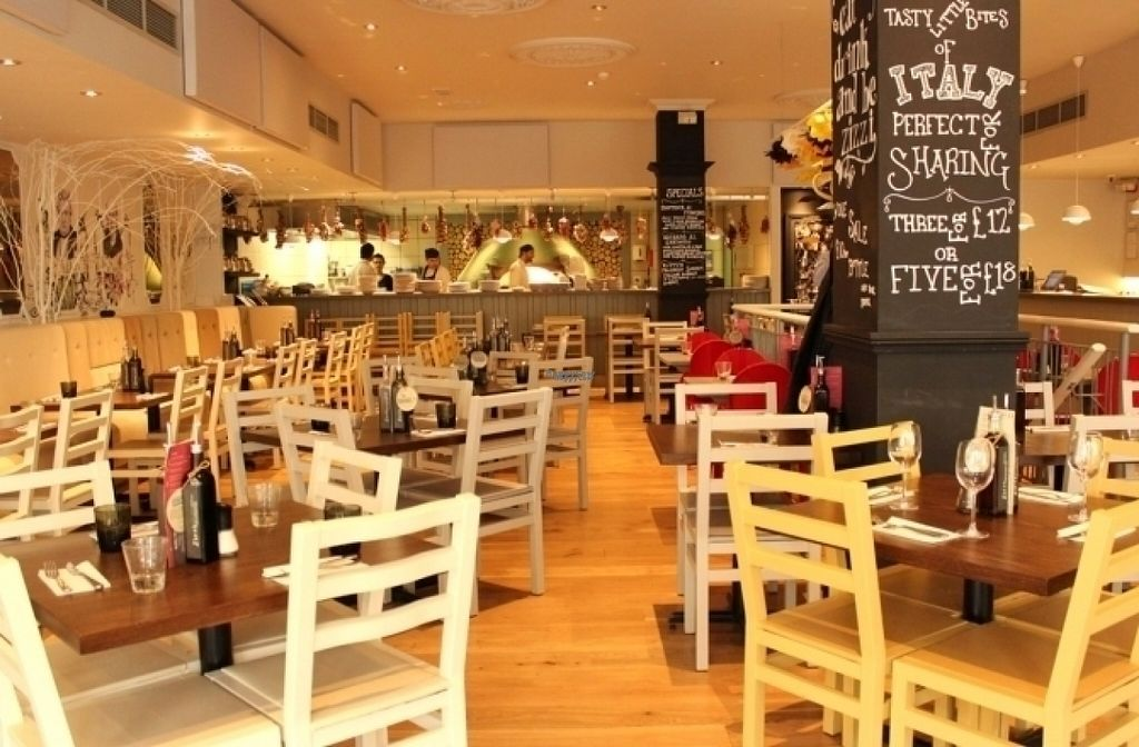 """Photo of Zizzi  by <a href=""""/members/profile/Meaks"""">Meaks</a> <br/>Zizzi <br/> August 11, 2016  - <a href='/contact/abuse/image/77466/167650'>Report</a>"""