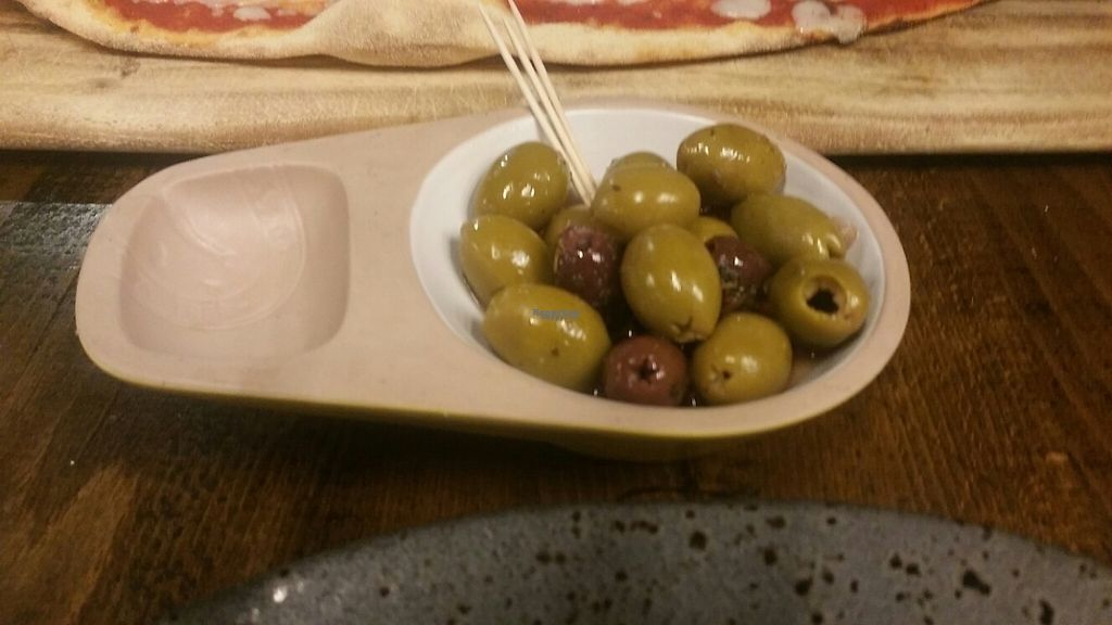 "Photo of Zizzi - The Light  by <a href=""/members/profile/KatieBatty"">KatieBatty</a> <br/>Olives <br/> February 21, 2017  - <a href='/contact/abuse/image/77470/228899'>Report</a>"