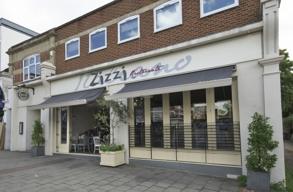 """Photo of Zizzi  by <a href=""""/members/profile/Meaks"""">Meaks</a> <br/>Zizzi <br/> August 18, 2016  - <a href='/contact/abuse/image/77485/169649'>Report</a>"""
