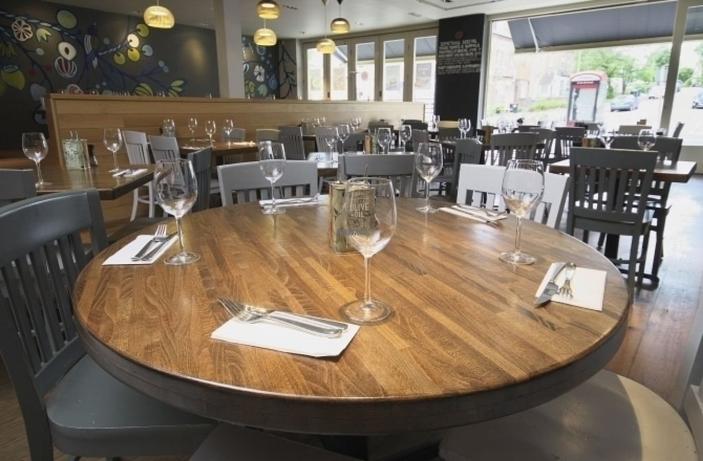 """Photo of Zizzi  by <a href=""""/members/profile/Meaks"""">Meaks</a> <br/>Zizzi <br/> August 18, 2016  - <a href='/contact/abuse/image/77485/169650'>Report</a>"""