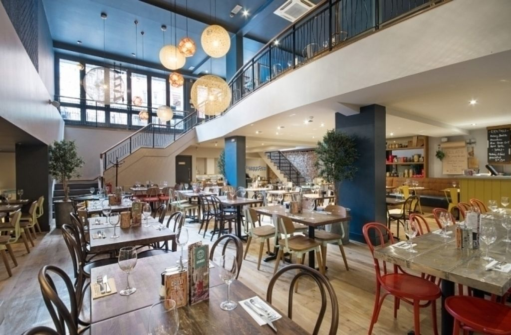 "Photo of Zizzi  by <a href=""/members/profile/Meaks"">Meaks</a> <br/>Zizzi <br/> August 4, 2016  - <a href='/contact/abuse/image/77561/165459'>Report</a>"