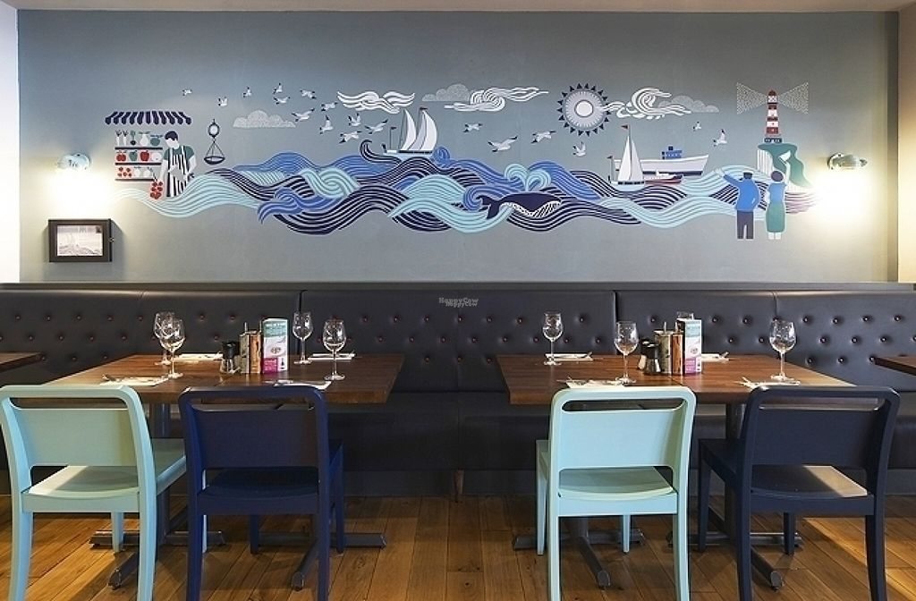 """Photo of Zizzi  by <a href=""""/members/profile/Meaks"""">Meaks</a> <br/>Zizzi <br/> August 18, 2016  - <a href='/contact/abuse/image/77563/169808'>Report</a>"""