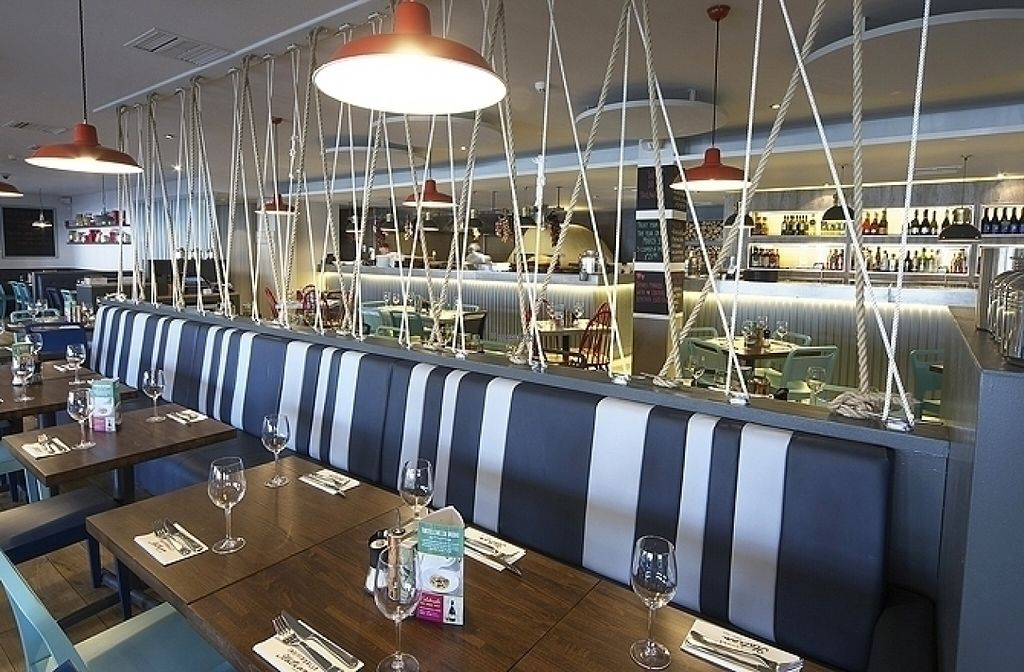 """Photo of Zizzi  by <a href=""""/members/profile/Meaks"""">Meaks</a> <br/>Zizzi <br/> August 18, 2016  - <a href='/contact/abuse/image/77563/169809'>Report</a>"""