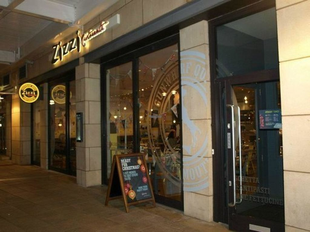 """Photo of Zizzi  by <a href=""""/members/profile/Meaks"""">Meaks</a> <br/>Zizzi <br/> August 18, 2016  - <a href='/contact/abuse/image/77564/169811'>Report</a>"""