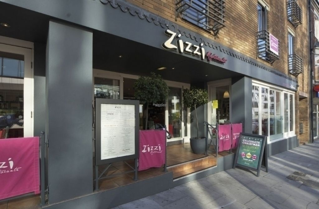 """Photo of Zizzi  by <a href=""""/members/profile/Meaks"""">Meaks</a> <br/>Zizzi <br/> August 11, 2016  - <a href='/contact/abuse/image/77565/167758'>Report</a>"""