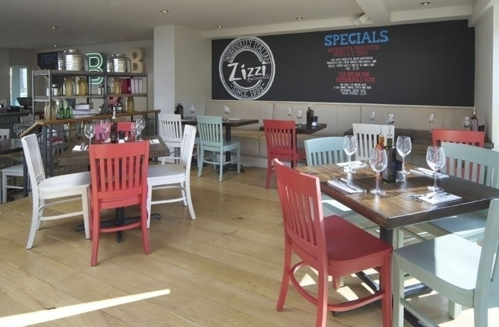 """Photo of Zizzi  by <a href=""""/members/profile/Meaks"""">Meaks</a> <br/>Zizzi <br/> August 11, 2016  - <a href='/contact/abuse/image/77565/167759'>Report</a>"""