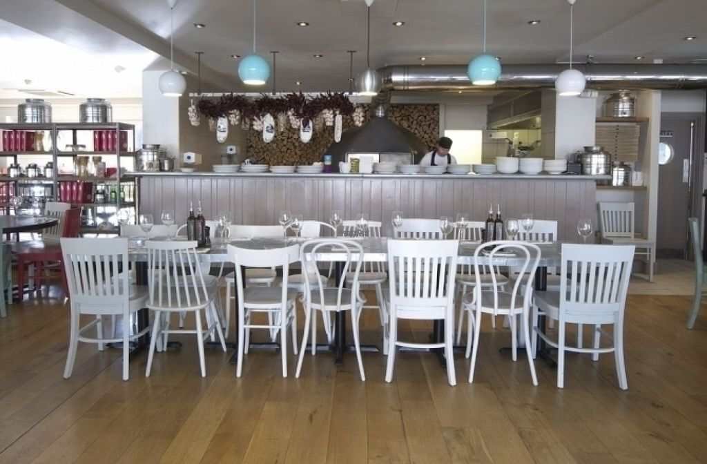"""Photo of Zizzi  by <a href=""""/members/profile/Meaks"""">Meaks</a> <br/>Zizzi <br/> August 11, 2016  - <a href='/contact/abuse/image/77565/167760'>Report</a>"""