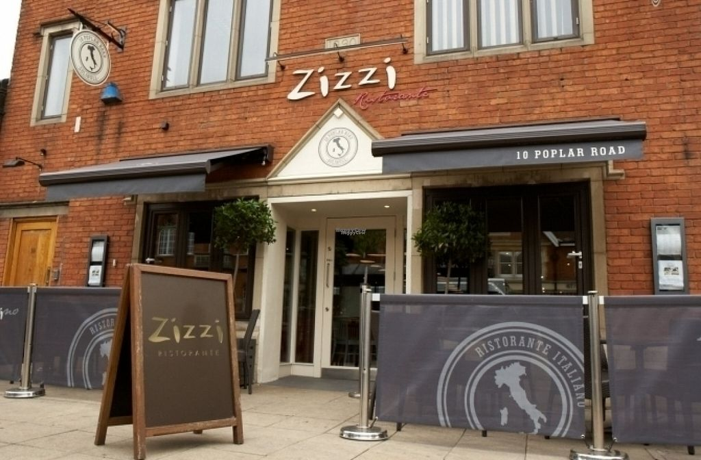 """Photo of Zizzi  by <a href=""""/members/profile/Meaks"""">Meaks</a> <br/>Zizzi <br/> August 19, 2016  - <a href='/contact/abuse/image/77572/170065'>Report</a>"""