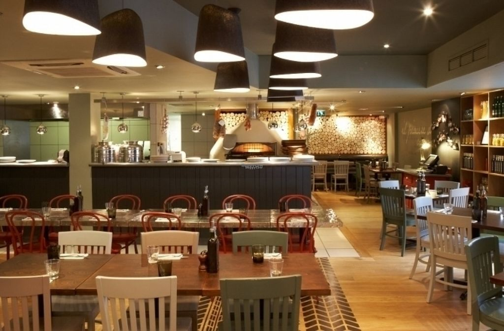 """Photo of Zizzi  by <a href=""""/members/profile/Meaks"""">Meaks</a> <br/>Zizzi <br/> August 19, 2016  - <a href='/contact/abuse/image/77572/170067'>Report</a>"""