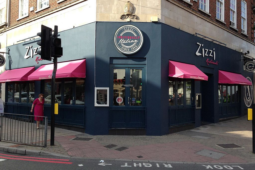 """Photo of Zizzi  by <a href=""""/members/profile/Meaks"""">Meaks</a> <br/>Zizzi <br/> August 19, 2016  - <a href='/contact/abuse/image/77576/169990'>Report</a>"""