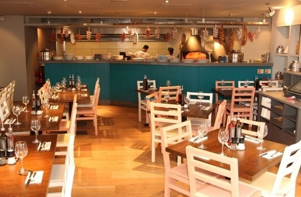 """Photo of Zizzi   by <a href=""""/members/profile/Meaks"""">Meaks</a> <br/>Zizzi  <br/> August 15, 2016  - <a href='/contact/abuse/image/77583/168914'>Report</a>"""