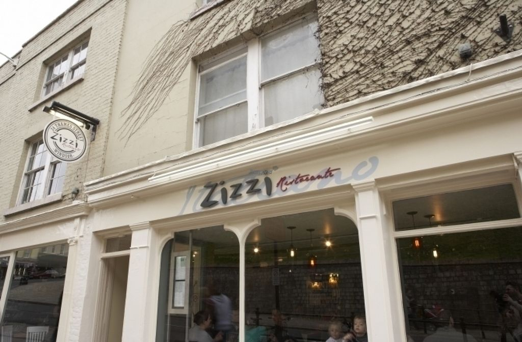 "Photo of Zizzi  by <a href=""/members/profile/Meaks"">Meaks</a> <br/>Zizzi <br/> August 18, 2016  - <a href='/contact/abuse/image/77585/169689'>Report</a>"