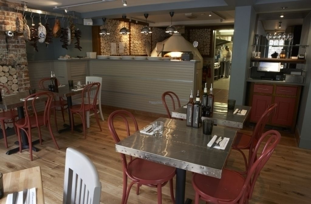 "Photo of Zizzi  by <a href=""/members/profile/Meaks"">Meaks</a> <br/>Zizzi <br/> August 18, 2016  - <a href='/contact/abuse/image/77585/169691'>Report</a>"