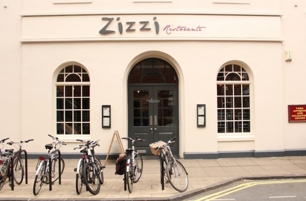 "Photo of Zizzi  by <a href=""/members/profile/Meaks"">Meaks</a> <br/>Zizzi <br/> August 4, 2016  - <a href='/contact/abuse/image/77590/165404'>Report</a>"
