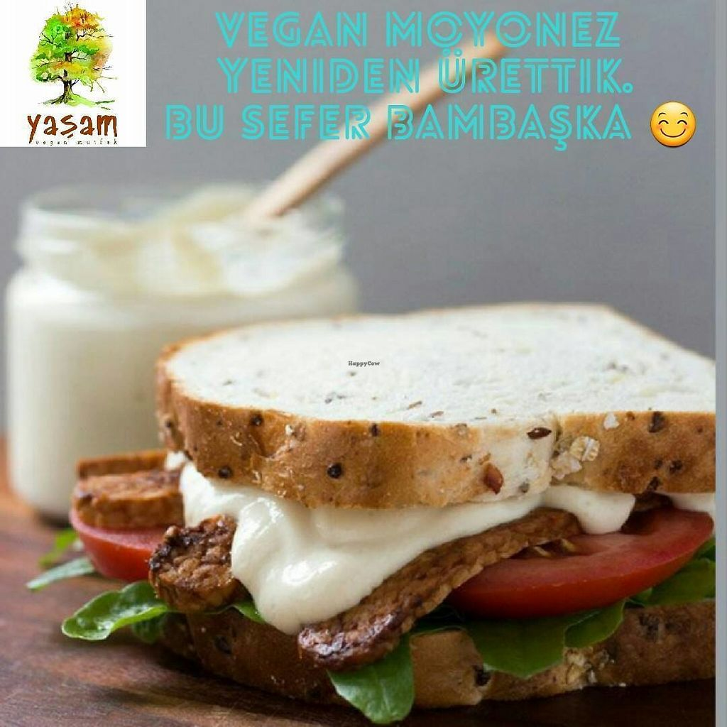 """Photo of Yasam Vegan Kafe  by <a href=""""/members/profile/neseliol"""">neseliol</a> <br/>Vegan mayo. Its so delicious <br/> May 5, 2017  - <a href='/contact/abuse/image/77640/255808'>Report</a>"""