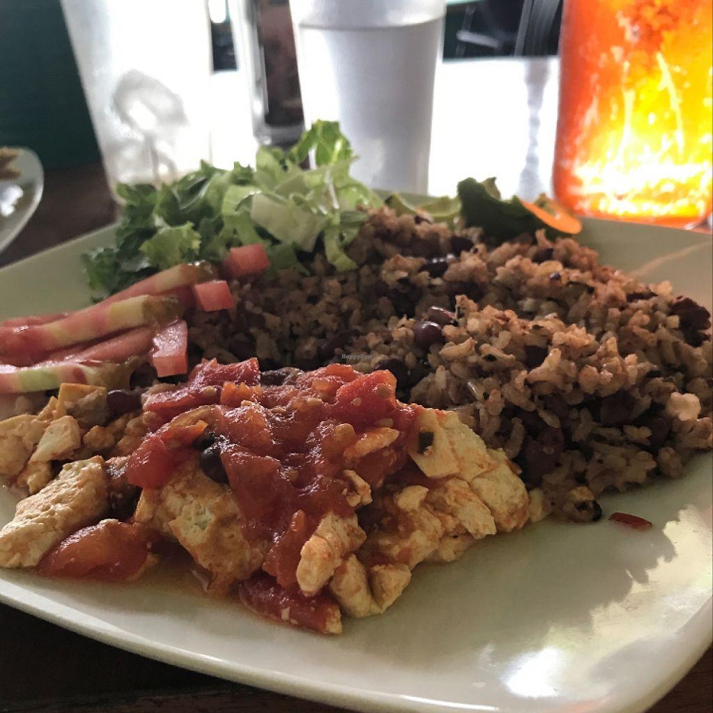"""Photo of La Esquina Vegetariana  by <a href=""""/members/profile/LeoAngulo"""">LeoAngulo</a> <br/>Gallo pinto con tofu <br/> May 2, 2017  - <a href='/contact/abuse/image/77658/255023'>Report</a>"""