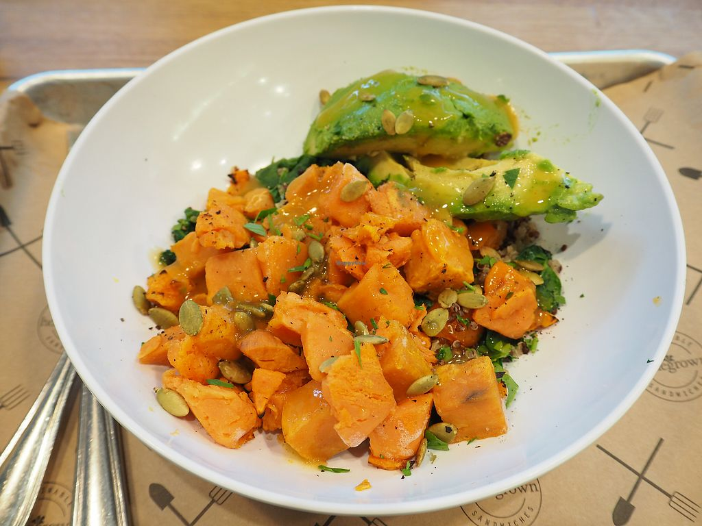"""Photo of Homegrown - Downtown  by <a href=""""/members/profile/citizenInsane"""">citizenInsane</a> <br/>sweet potato, quinoa, avocado, greens. does the job,when you're in a rush <br/> November 3, 2017  - <a href='/contact/abuse/image/77663/321378'>Report</a>"""