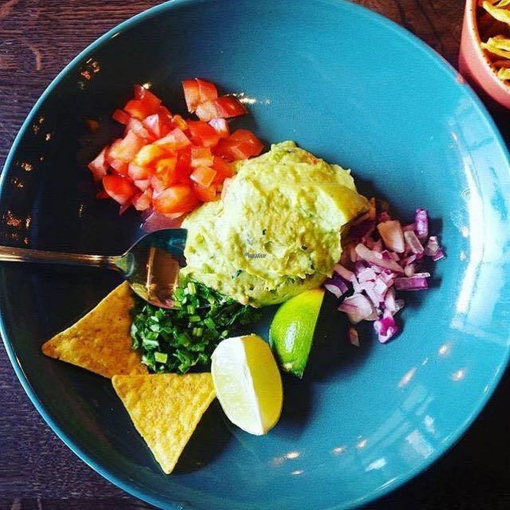 """Photo of Las Iguanas  by <a href=""""/members/profile/Meaks"""">Meaks</a> <br/>Guacamole <br/> August 2, 2016  - <a href='/contact/abuse/image/77808/164649'>Report</a>"""