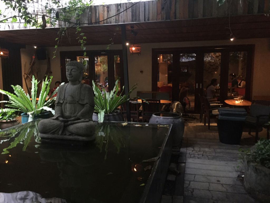 """Photo of The Fig Lounge & Coffee  by <a href=""""/members/profile/SusanRoberts"""">SusanRoberts</a> <br/>The fig, outdoor seating <br/> August 2, 2016  - <a href='/contact/abuse/image/77828/164695'>Report</a>"""