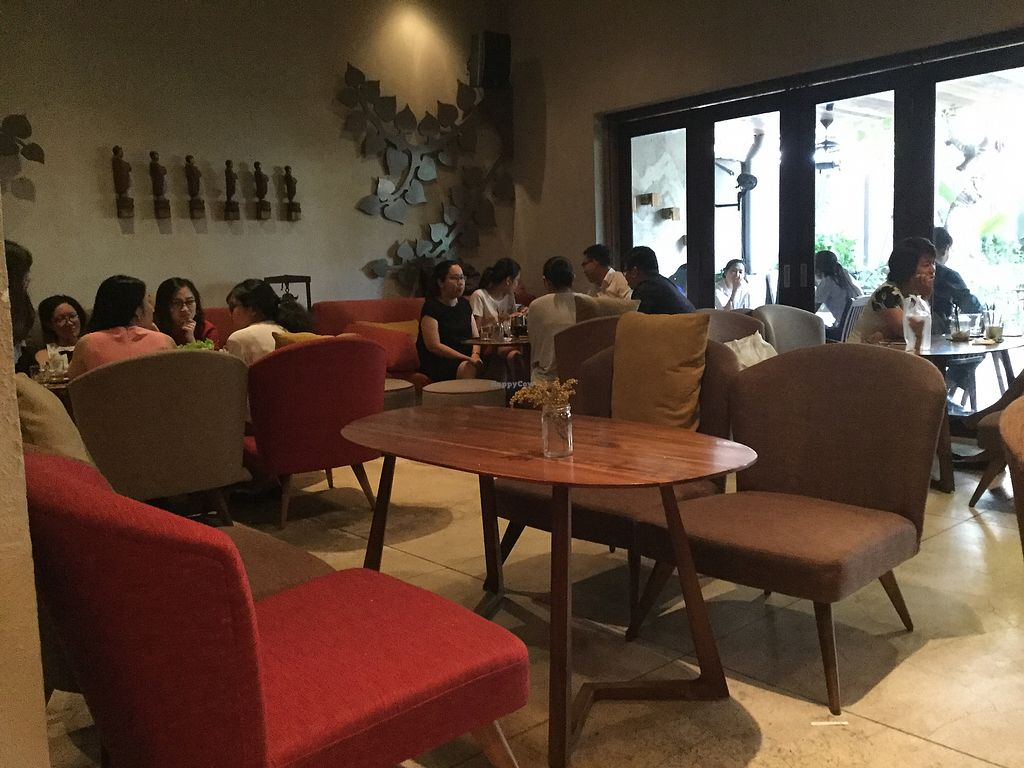 """Photo of The Fig Lounge & Coffee  by <a href=""""/members/profile/grahamjohnhunt"""">grahamjohnhunt</a> <br/>interior <br/> February 1, 2018  - <a href='/contact/abuse/image/77828/353516'>Report</a>"""