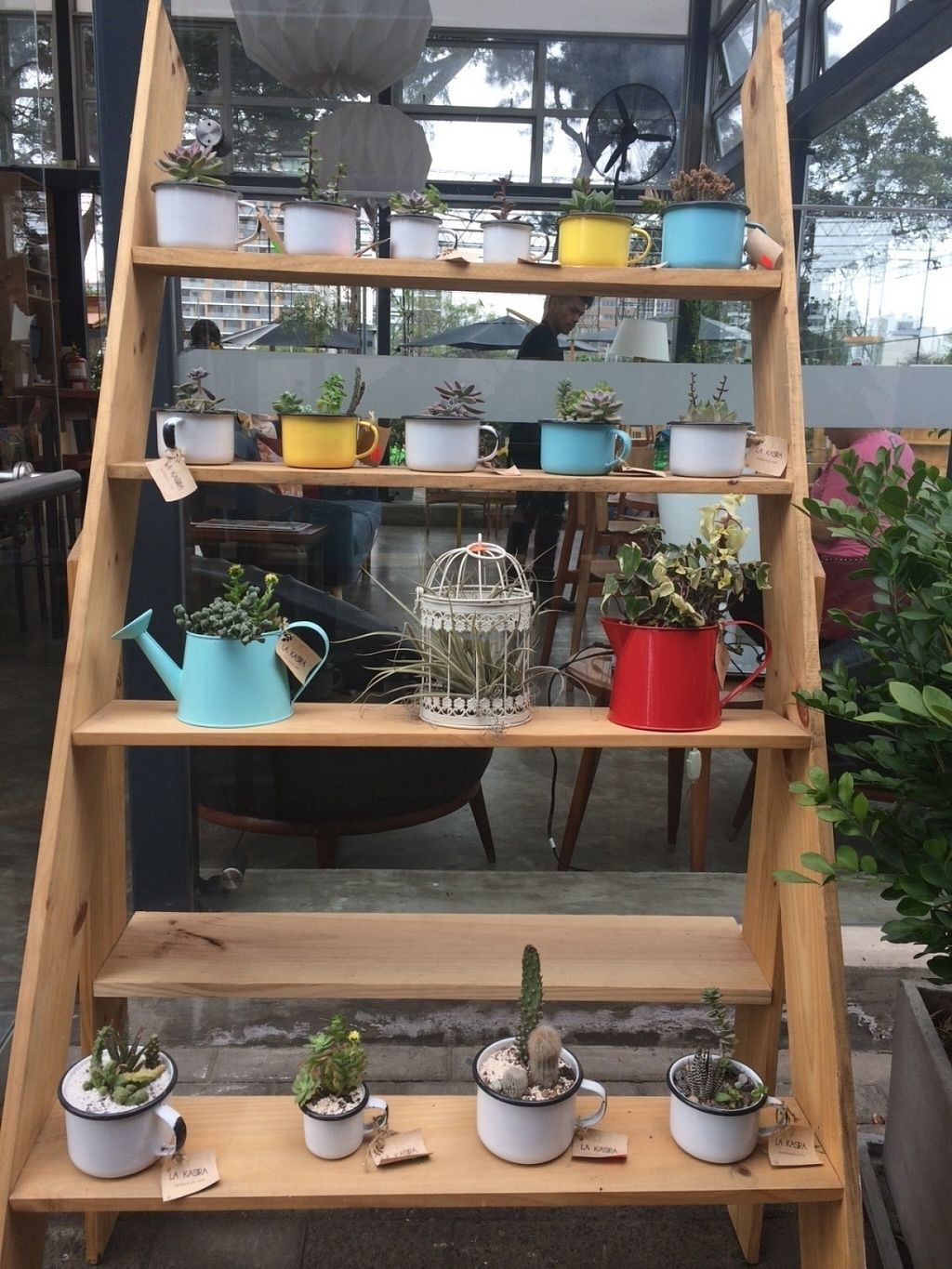 """Photo of La Bodega Verde  by <a href=""""/members/profile/AlinaNunes"""">AlinaNunes</a> <br/>Very cute decoration <br/> August 6, 2016  - <a href='/contact/abuse/image/77857/166039'>Report</a>"""