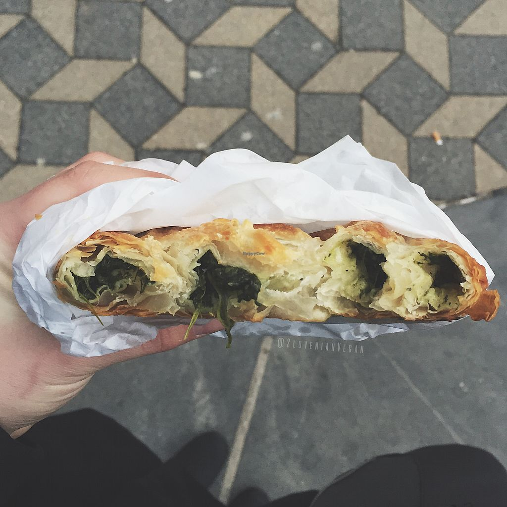 """Photo of BackWerk  by <a href=""""/members/profile/slovenianvegan"""">slovenianvegan</a> <br/>Spinach burek   Photo by: Slovenian Vegan page on Facebook <br/> February 2, 2018  - <a href='/contact/abuse/image/77858/354001'>Report</a>"""