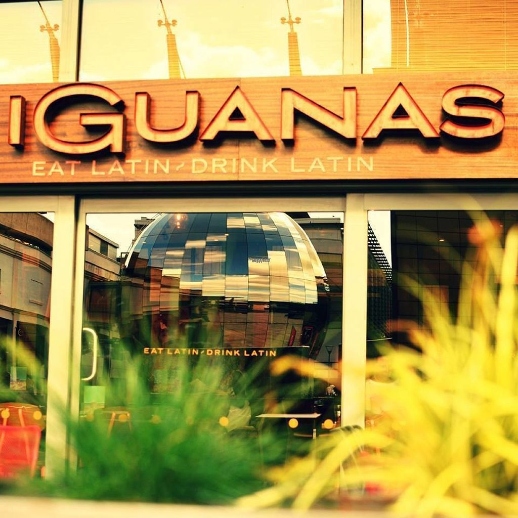 "Photo of Las Iguanas - Harbourside City Centre  by <a href=""/members/profile/Meaks"">Meaks</a> <br/>Las Iguanas <br/> August 2, 2016  - <a href='/contact/abuse/image/77871/164735'>Report</a>"
