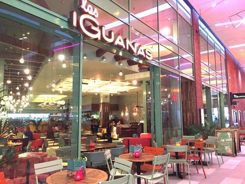 "Photo of Las Iguanas - Wembley  by <a href=""/members/profile/Meaks"">Meaks</a> <br/>Las Iguanas - Wembley <br/> August 4, 2016  - <a href='/contact/abuse/image/77987/165308'>Report</a>"