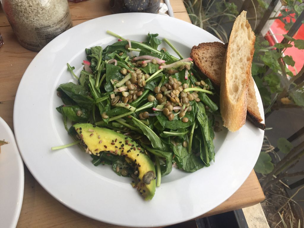 """Photo of Le Pain Quotidien - Vila Madalena  by <a href=""""/members/profile/Paolla"""">Paolla</a> <br/>Salad <br/> February 2, 2017  - <a href='/contact/abuse/image/78021/221386'>Report</a>"""