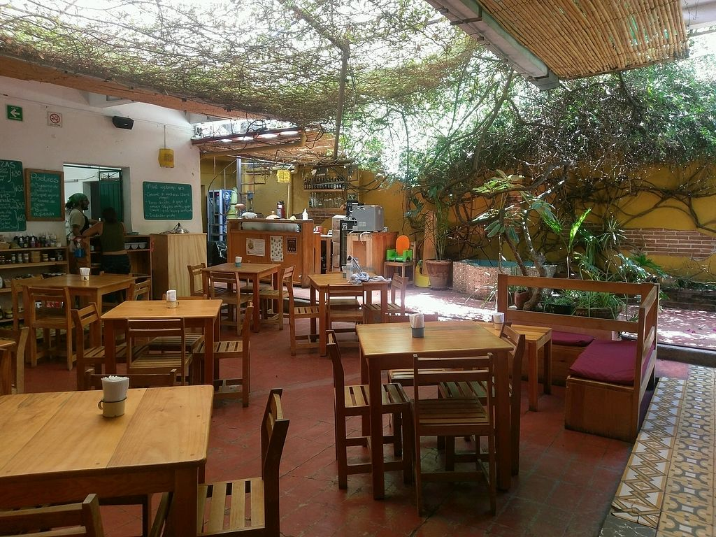 "Photo of La Jicara  by <a href=""/members/profile/amylorelle"">amylorelle</a> <br/>courtyard eating area <br/> September 15, 2017  - <a href='/contact/abuse/image/78114/304804'>Report</a>"