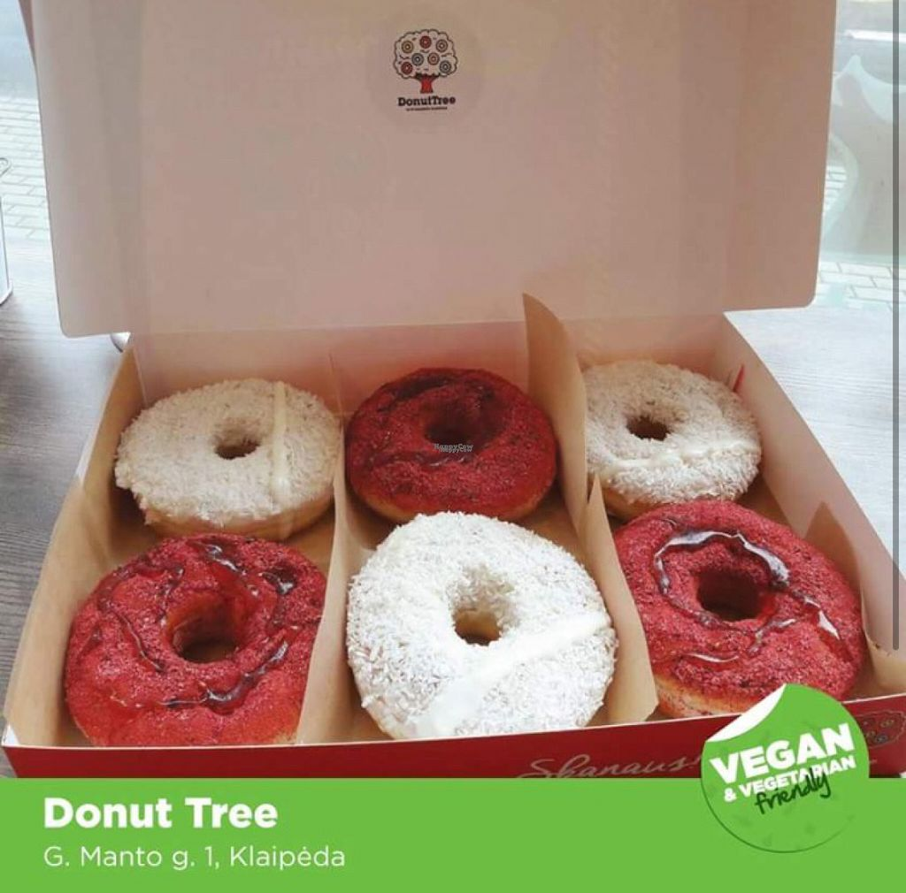 """Photo of CLOSED: Donut Tree  by <a href=""""/members/profile/LiucijaPetrauskaite"""">LiucijaPetrauskaite</a> <br/>Photo taken from facebook <br/> August 8, 2016  - <a href='/contact/abuse/image/78167/166947'>Report</a>"""