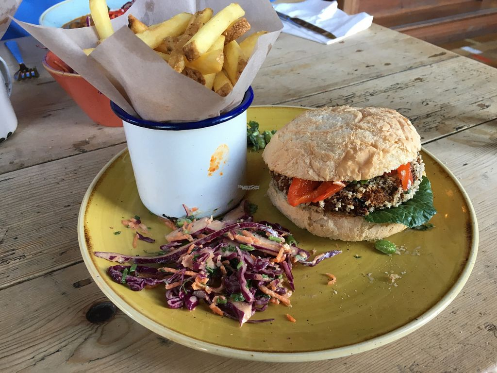 """Photo of Pico Lounge  by <a href=""""/members/profile/Greyskies"""">Greyskies</a> <br/>Vegan burger, slaw and fries <br/> October 3, 2016  - <a href='/contact/abuse/image/78212/179475'>Report</a>"""
