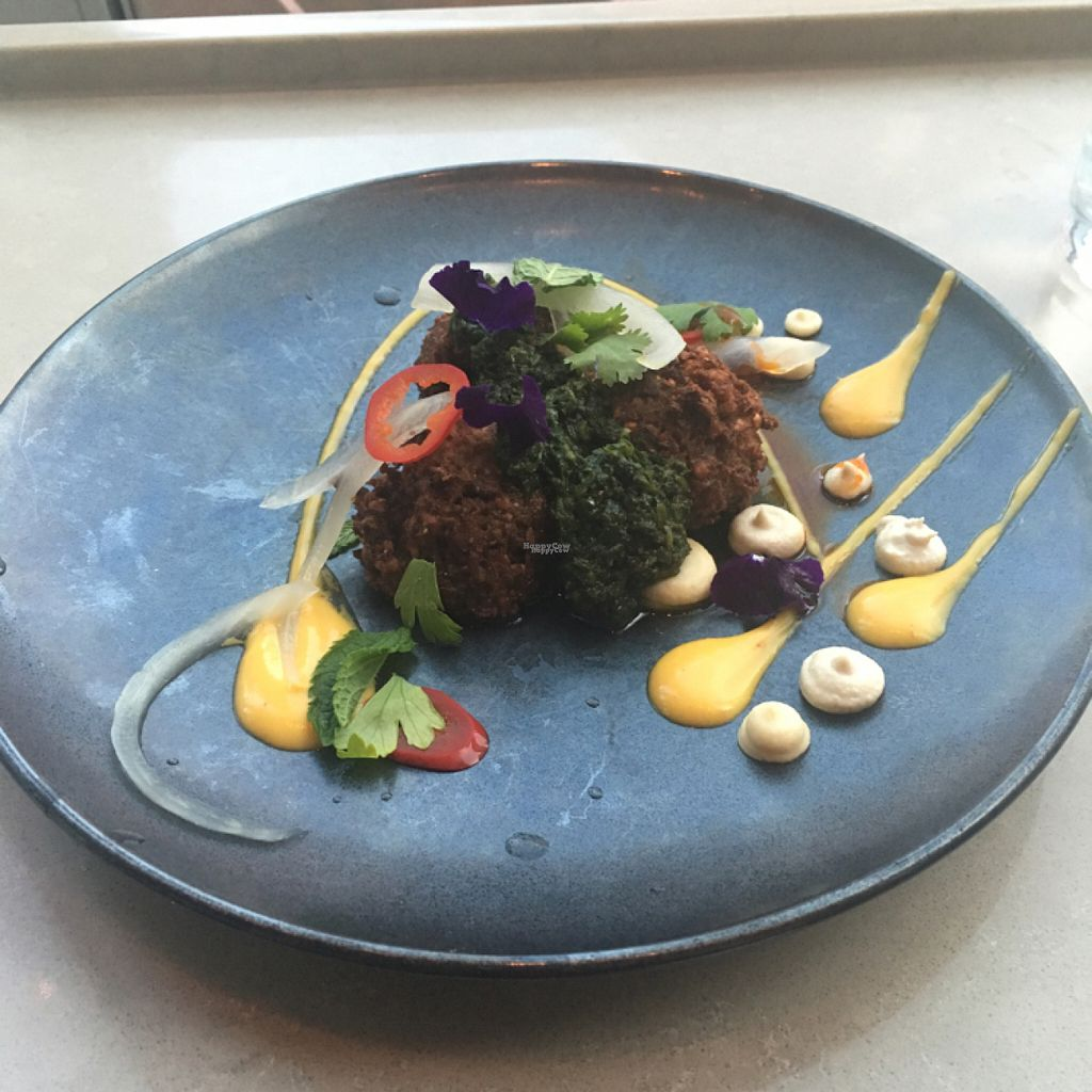 "Photo of EVO Restaurant and Bar  by <a href=""/members/profile/iamrunningthis"">iamrunningthis</a> <br/>Falafel portion of the vegan tasting menu <br/> August 8, 2016  - <a href='/contact/abuse/image/78225/166758'>Report</a>"