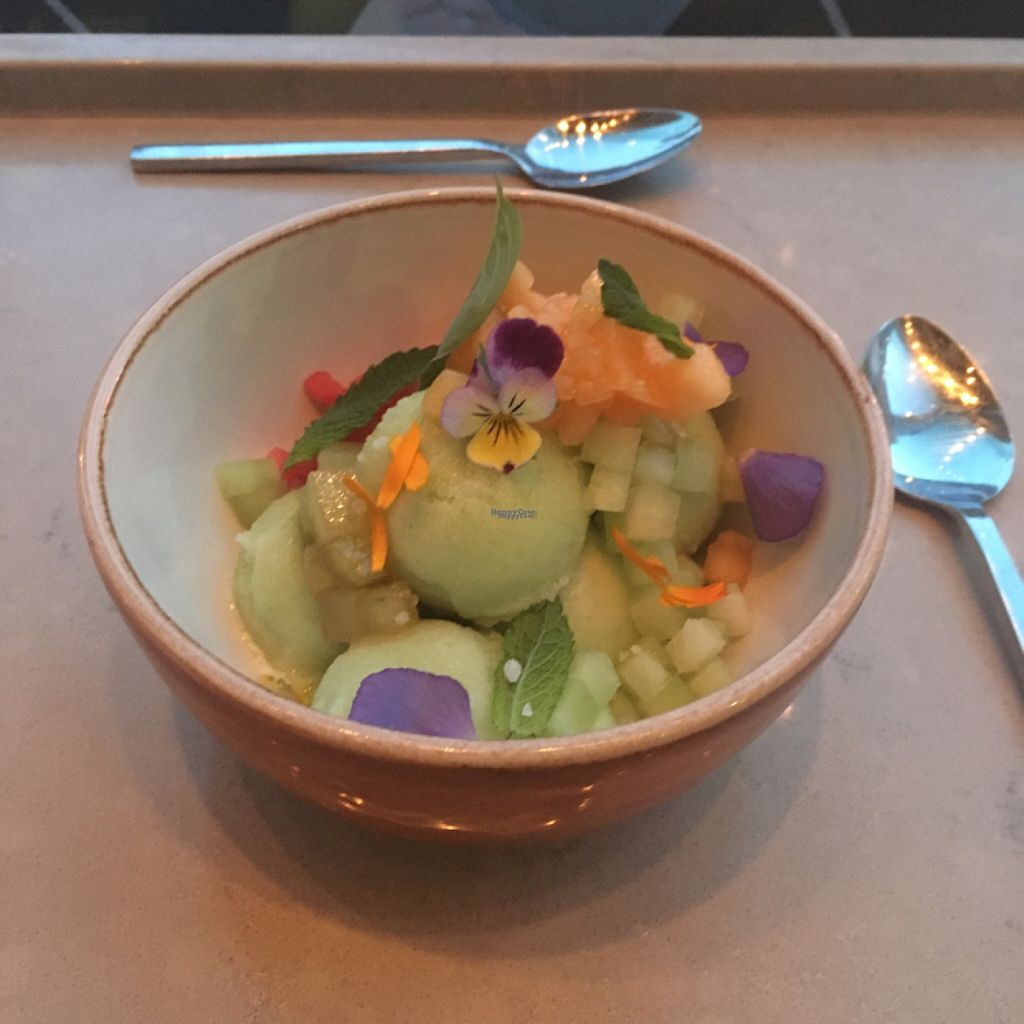 "Photo of EVO Restaurant and Bar  by <a href=""/members/profile/iamrunningthis"">iamrunningthis</a> <br/>cucumber rose sorbet  <br/> August 8, 2016  - <a href='/contact/abuse/image/78225/166761'>Report</a>"