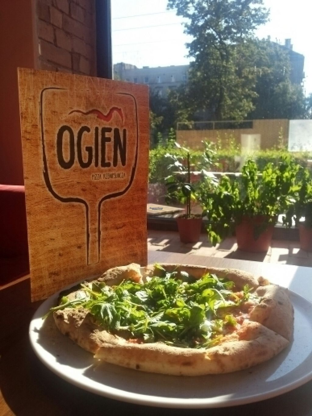 """Photo of Ogien  by <a href=""""/members/profile/RoslinnieJemy"""">RoslinnieJemy</a> <br/>pizza love <br/> August 12, 2016  - <a href='/contact/abuse/image/78493/167861'>Report</a>"""