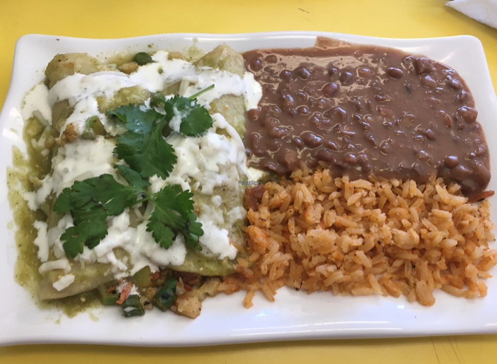 "Photo of CLOSED: Paiz Latin & Vegan Food  by <a href=""/members/profile/egietz"">egietz</a> <br/>vegan enchiladas  <br/> November 7, 2016  - <a href='/contact/abuse/image/78545/208161'>Report</a>"