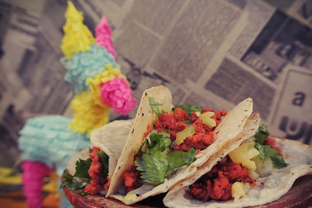 "Photo of Burrito Pinata  by <a href=""/members/profile/community"">community</a> <br/>vegan tacos  <br/> September 3, 2016  - <a href='/contact/abuse/image/78568/173204'>Report</a>"