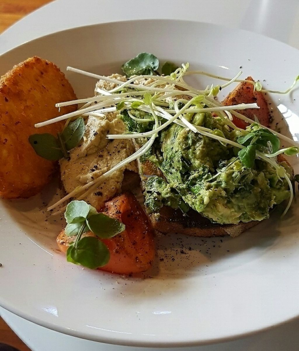 """Photo of CLOSED: Cuppa Tea  by <a href=""""/members/profile/Lulubear"""">Lulubear</a> <br/>Veganised avo and hummus brekkie with hash brown. Yum! <br/> November 14, 2016  - <a href='/contact/abuse/image/78574/261881'>Report</a>"""
