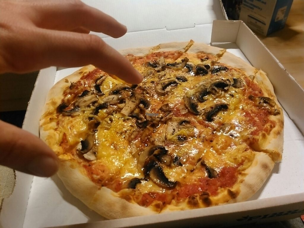"Photo of Pizzeria Schlaflos  by <a href=""/members/profile/Moonshine"">Moonshine</a> <br/>pizza funghi! delicious <br/> March 20, 2017  - <a href='/contact/abuse/image/78631/238808'>Report</a>"