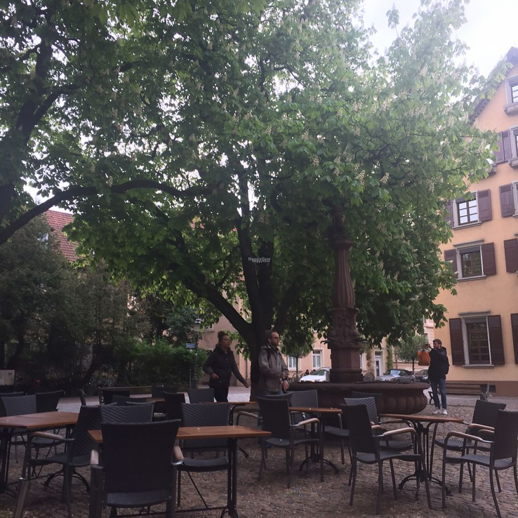 "Photo of Adelhaus  by <a href=""/members/profile/Smeg"">Smeg</a> <br/>You can eat inside or outside in this beautiful little square <br/> April 24, 2017  - <a href='/contact/abuse/image/78709/251888'>Report</a>"