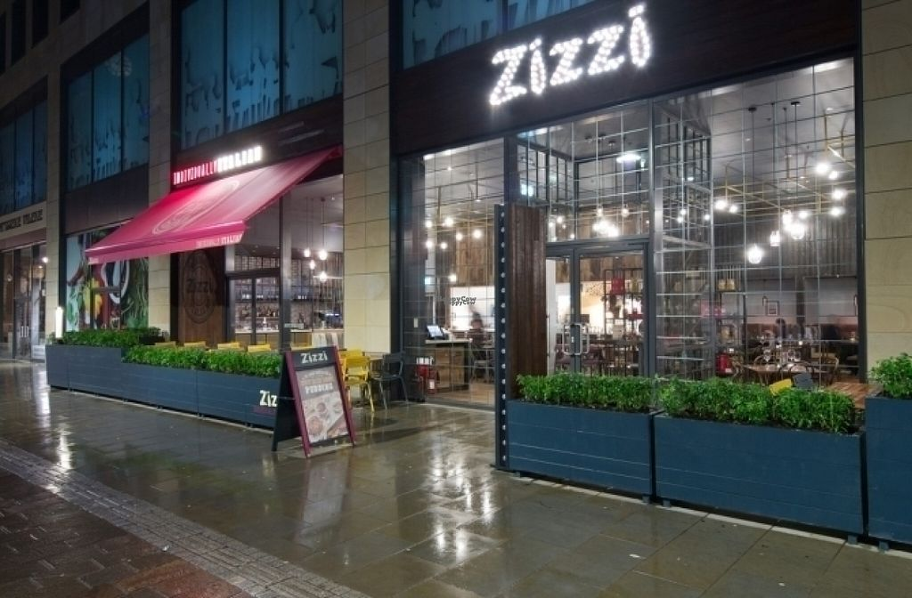 "Photo of Zizzi  by <a href=""/members/profile/Meaks"">Meaks</a> <br/>Zizzi <br/> August 18, 2016  - <a href='/contact/abuse/image/78868/169880'>Report</a>"