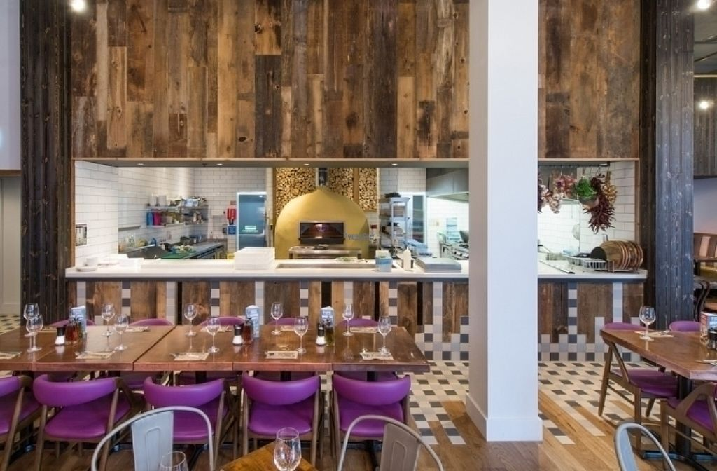 "Photo of Zizzi  by <a href=""/members/profile/Meaks"">Meaks</a> <br/>Zizzi <br/> August 18, 2016  - <a href='/contact/abuse/image/78868/169882'>Report</a>"