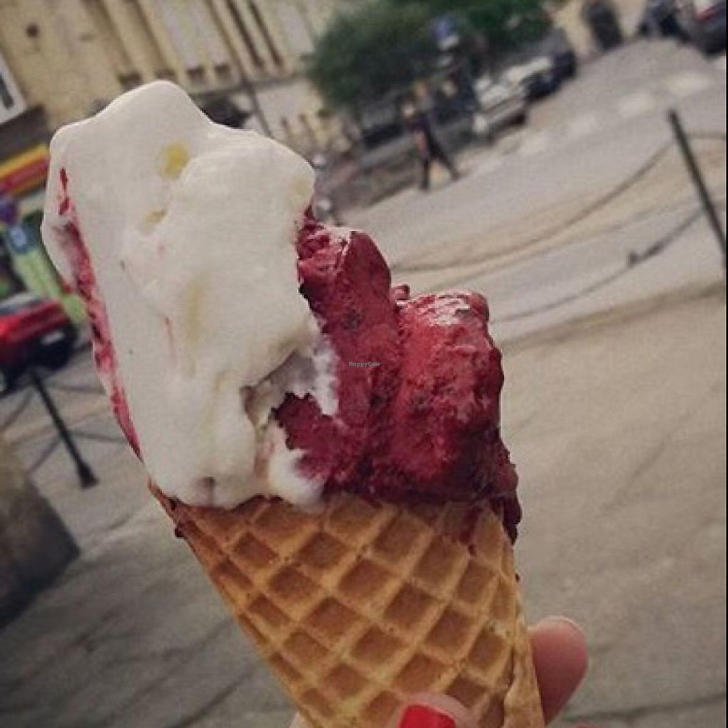 """Photo of Good Lood  by <a href=""""/members/profile/cajb"""">cajb</a> <br/>half eaten vegan malibu and forest fruit flavour on a gluten free cone <br/> May 20, 2017  - <a href='/contact/abuse/image/78915/260604'>Report</a>"""